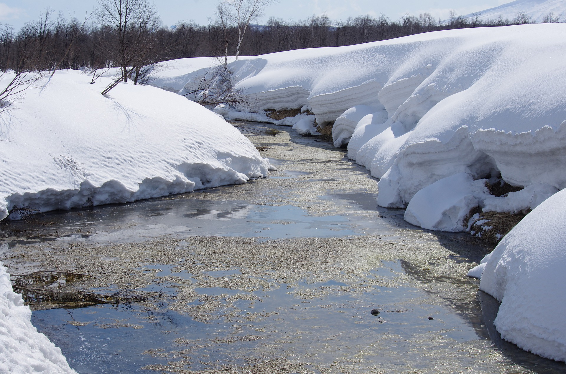 Flood watch issued by Kawartha Conservation with insistent rain, melting