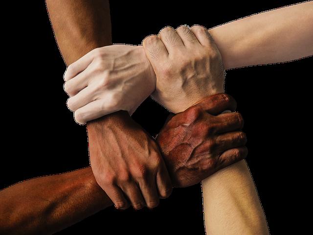 Bridging Principles: Diversity education seminar