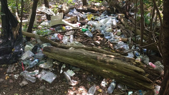 Local man uses Facebook to draw attention to 'awful' litter in Lindsay