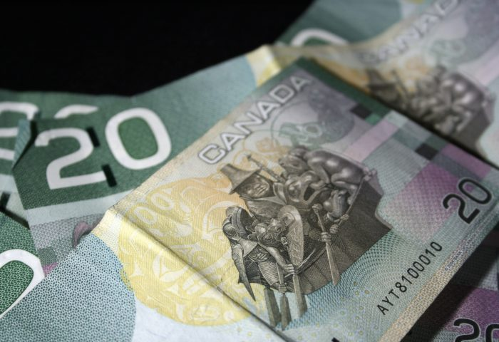 Frost out, Celebrations in, as basic income meeting adapts to college strike