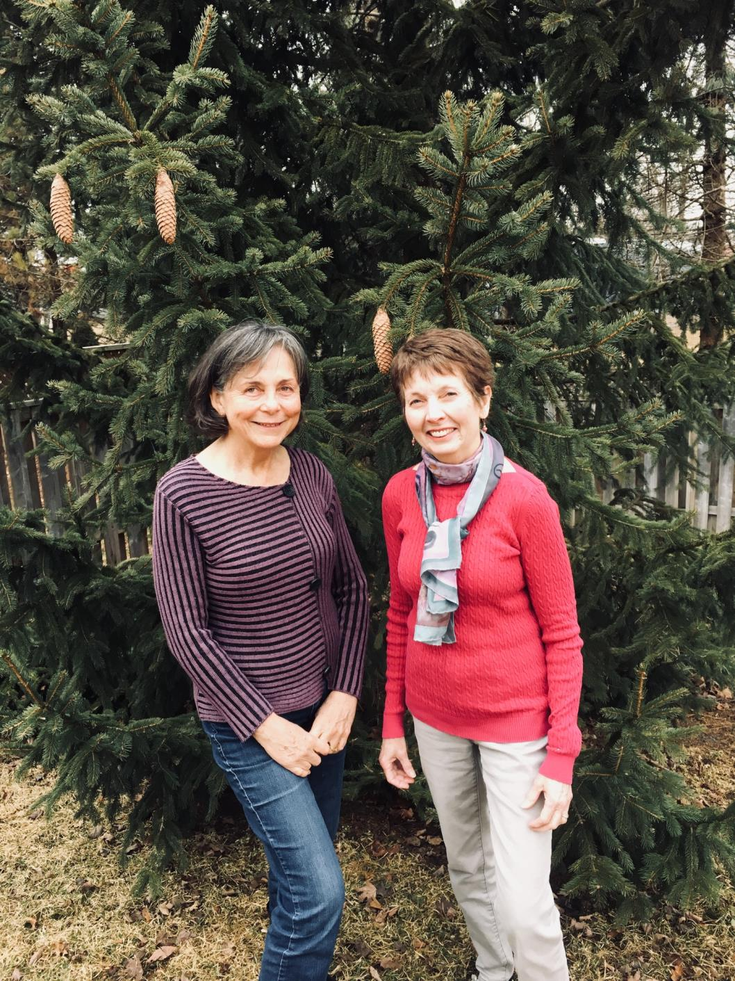 An inconvenient column: Local climate change educators walk the talk