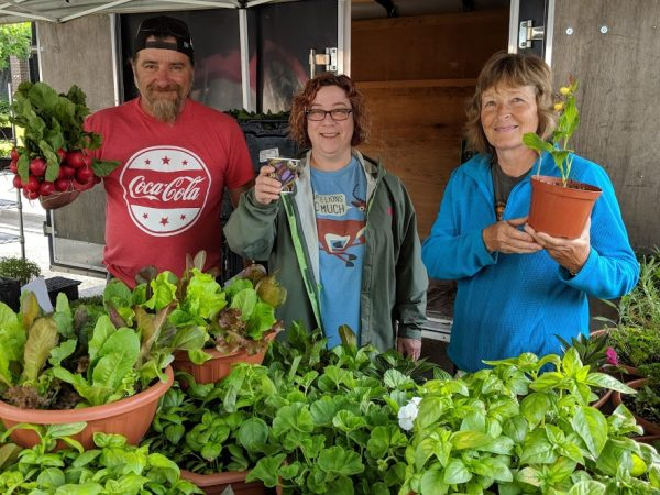 New Thursday Farmers' Market to open at Wilson Fields