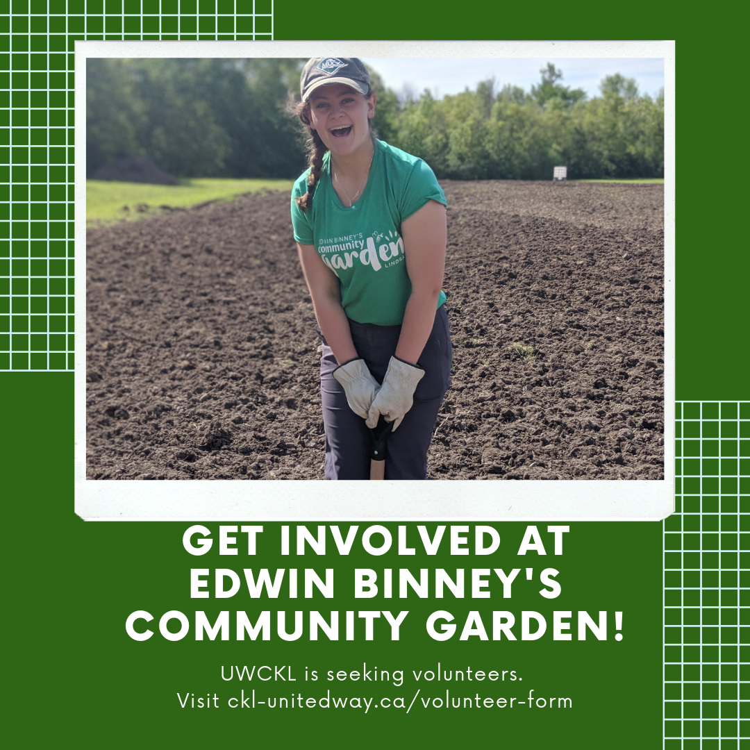 Edwin Binney's Community Garden seeking volunteers — Lindsay