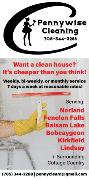 Pennywise Cleaning ad